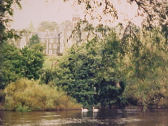 castleswan.jpg